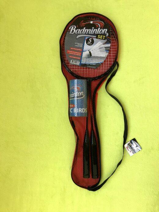 Badminton rockets with birds